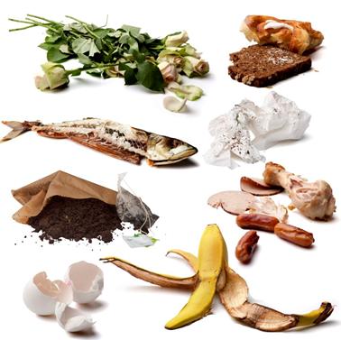 Billede med eksempler på affald, som sorteres som madaffald. Eksemplerne er en kasseret buket, gammelt brød, fiskeben, brugt køkkenrulle, brugt kaffefilter og the-brev, kødrester, æggeskaller og en bananskrald.